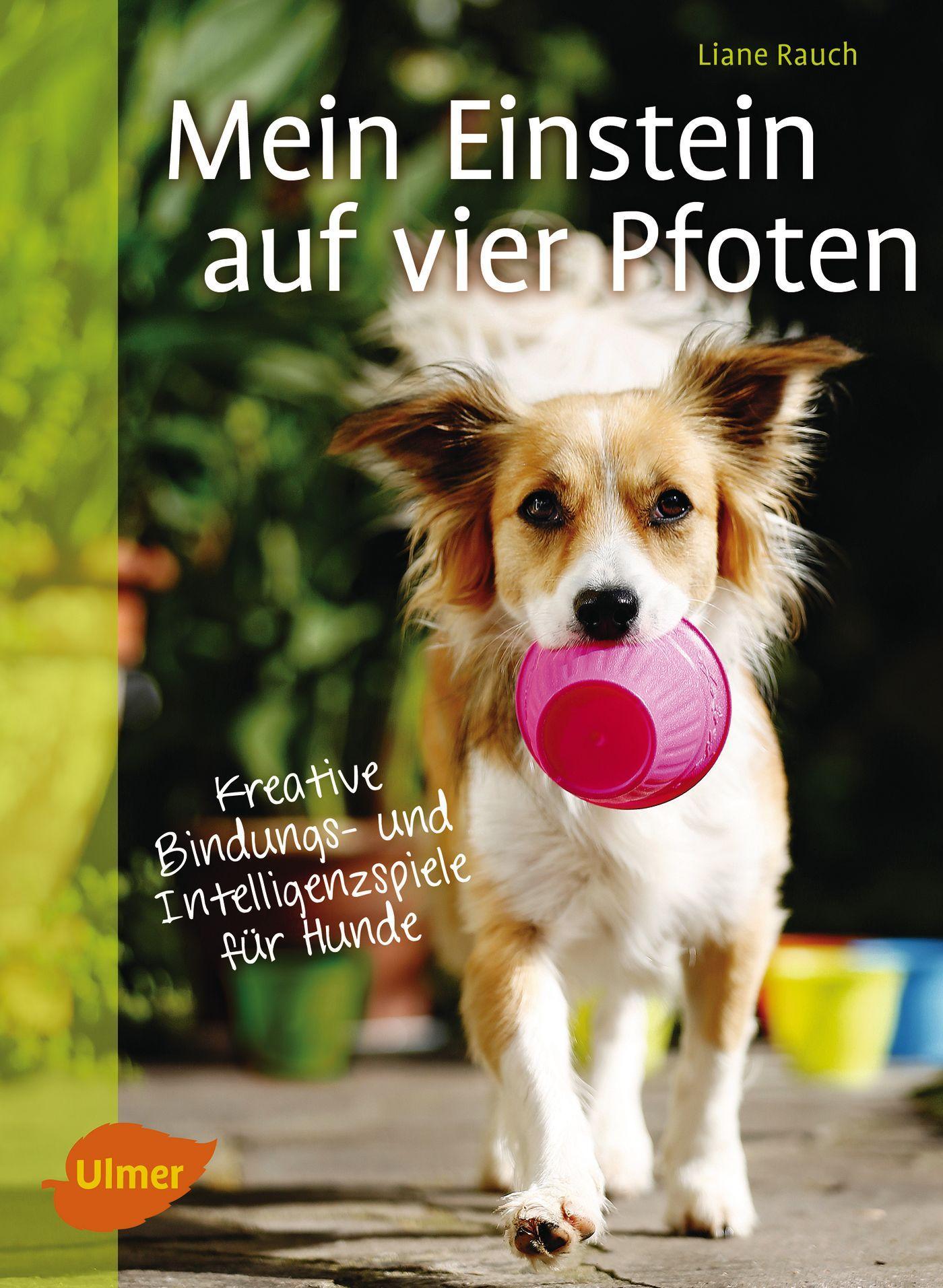 Mein Einstein auf vier Pfoten, Liane Rauch, Taschenbuch, Deutsch, 2016